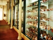 Archeology Storage
