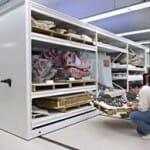 museum storage2